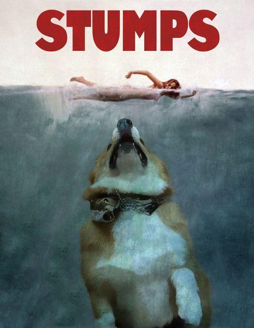 Jaws Corgis Stumps Cute Corgi Corgi Dog Welsh Corgi Puppies