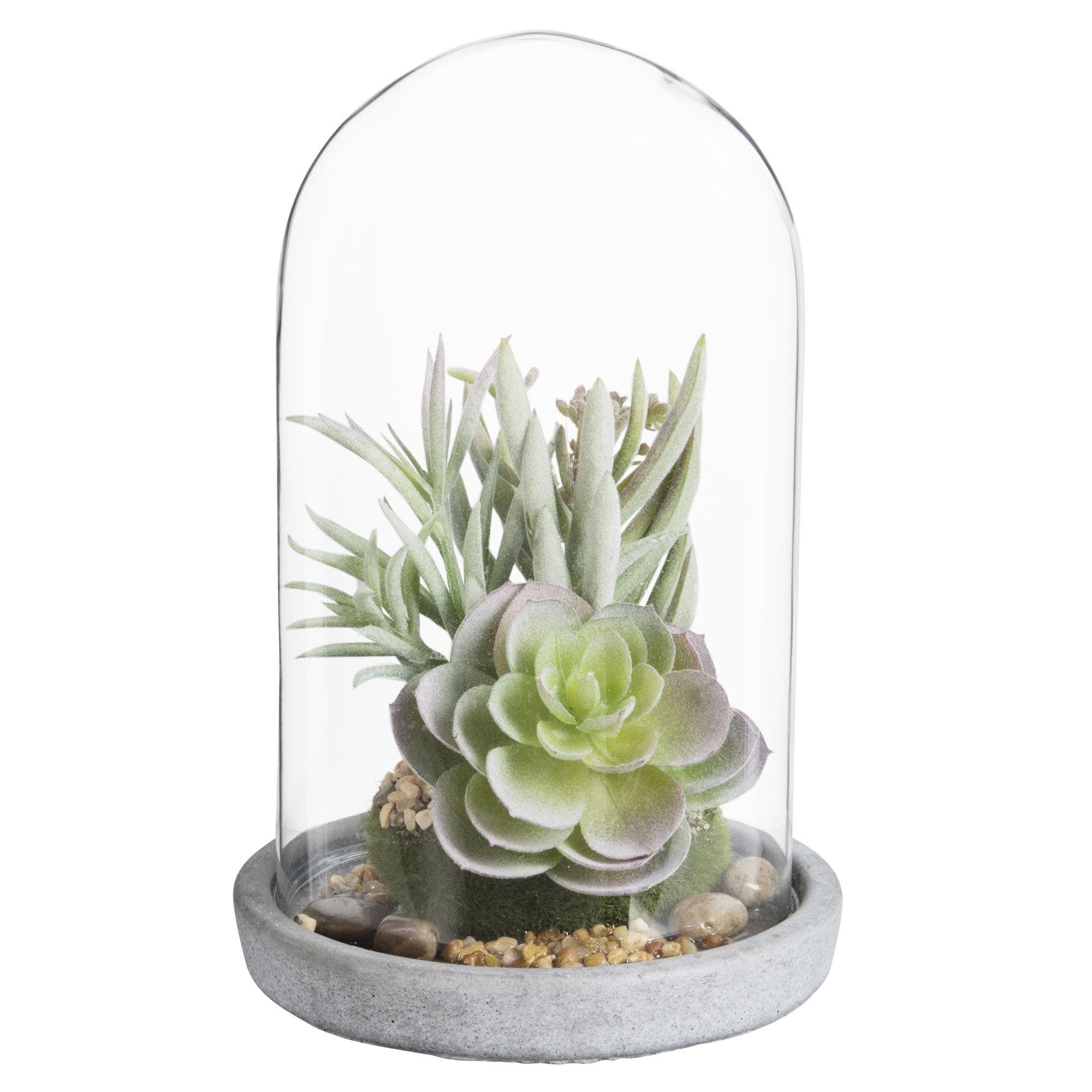 plantes grasses artificielles sous cloche en verre. Black Bedroom Furniture Sets. Home Design Ideas