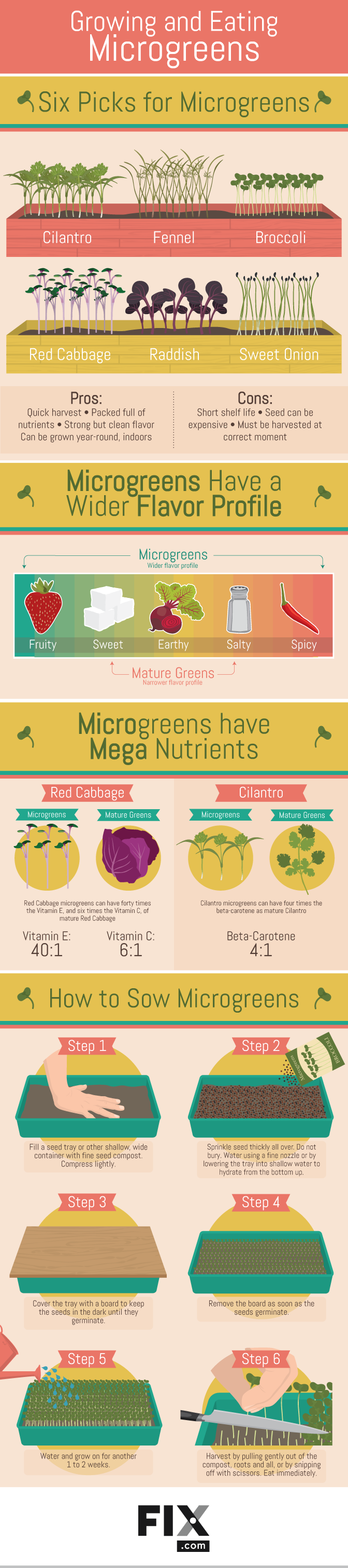 Growing and Eating Microgreens #infographic