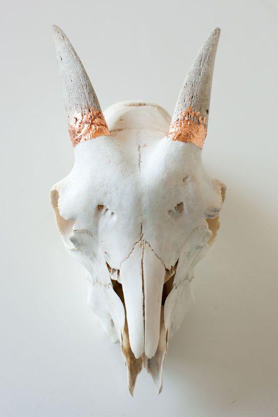 Pin de Lonnie Wilms en Ny stue | Pinterest | Impresionante y Anatomía