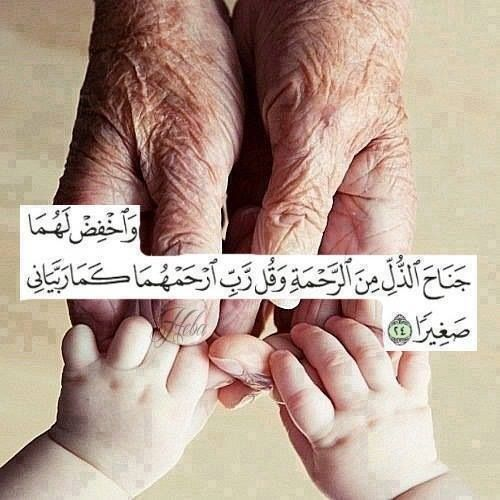 And Lower To Them Your Parents The Wing Of Humility Out Of Mercy And Say My Lord Have Mercy Upon Them As They Quran Verses Quran Quotes Wise Words Quotes