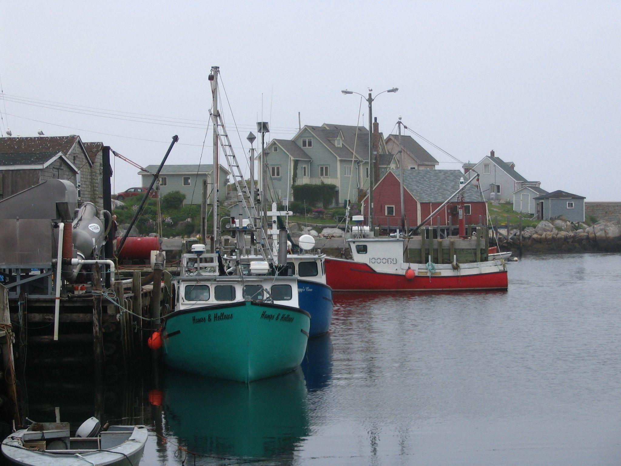 Misty morning fishing harbor, east coast (I think in Nova Scotia).  Photo by. J. Underwood. #coastal