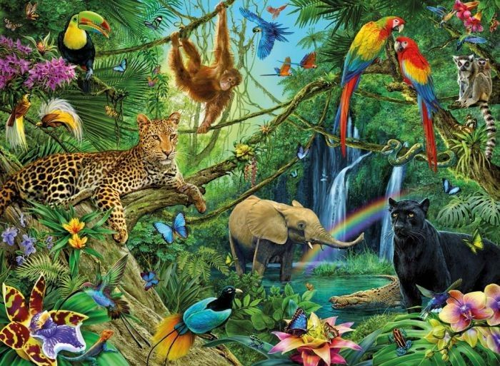kleurplaten van jungle dieren