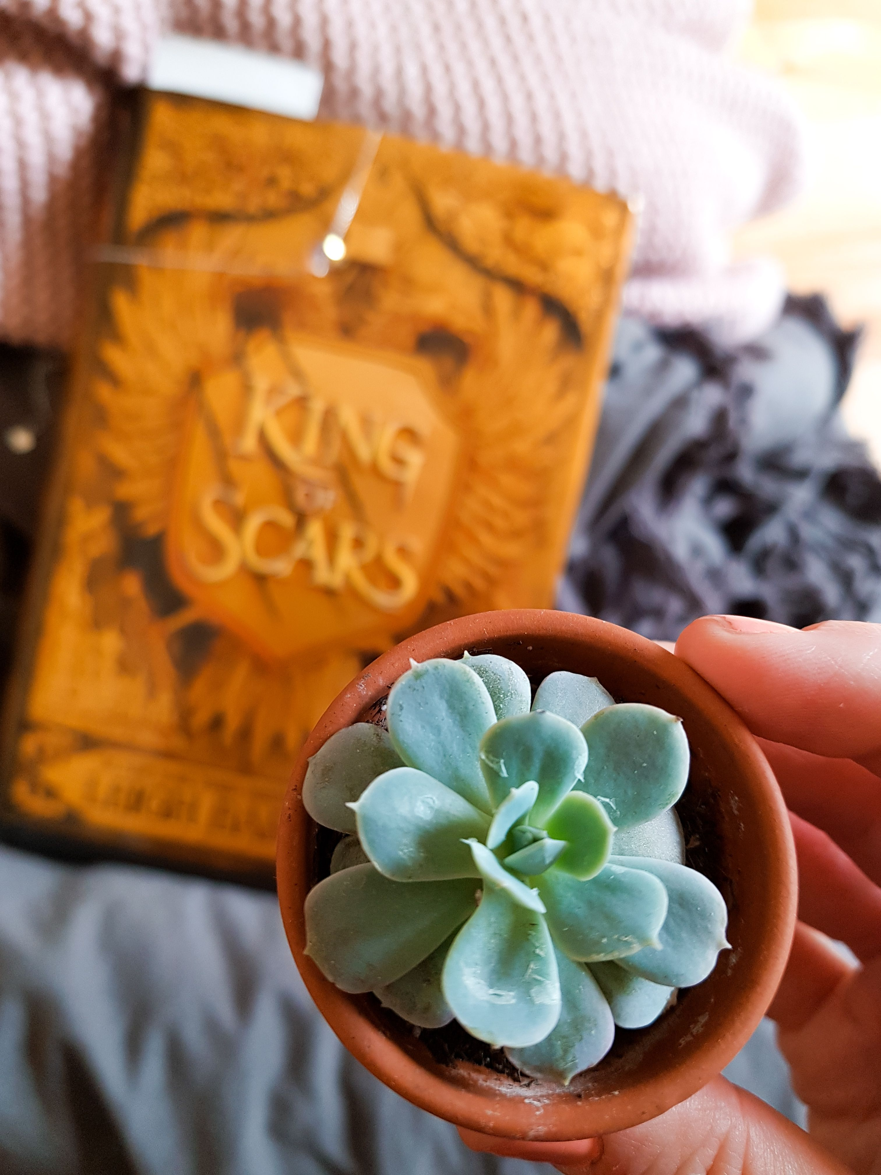 King Of Scars And Succulent On My Bookstagram Coffee And Notebooks