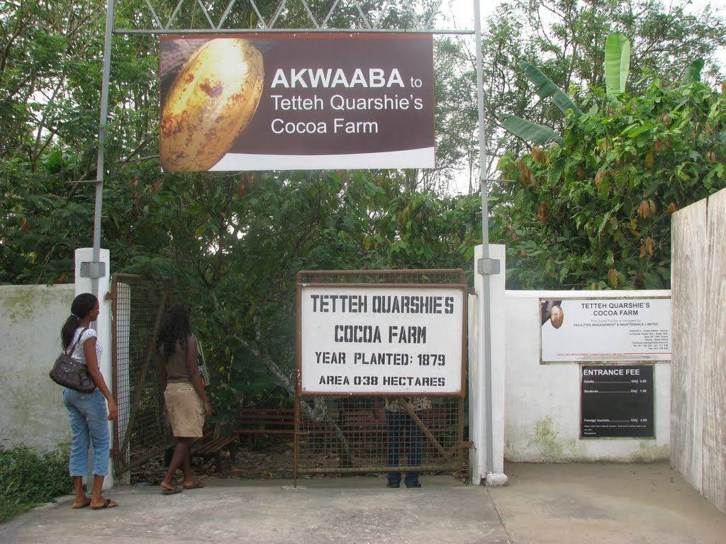 Image result for tetteh quarshie cocoa farm