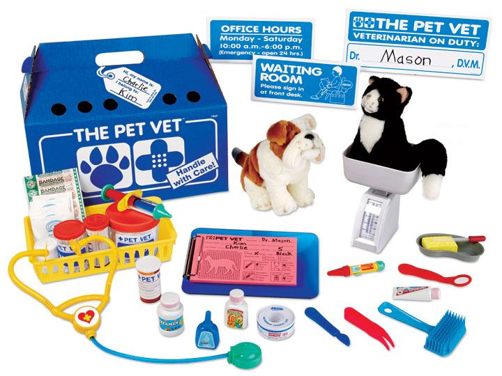 The Pet Vet Clinic Pet Vet Vet Clinics Dramatic Play Preschool