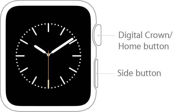 How To Use Your Apple Watch Digital Crown Iphone Watch Apple Watch