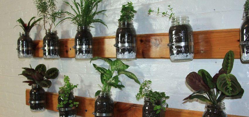Diy Build A Mason Jar Herb Garden Growing Your Own Food Plants