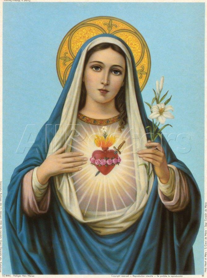 6a446094f mary sacred heart - Google Search | Ideas | Holy mary, Virgin mary ...