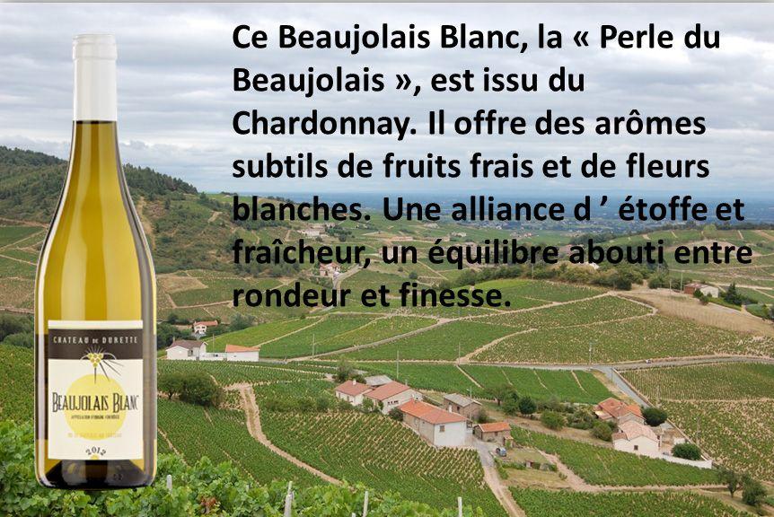 Pour l'accord mets-vins de la semaine nous vous proposons un Bar au citron cuit au four associé avec notre Beaujolais Blanc. [http://www.marmiton.org/recettes/recette_bar-au-citron-au-four-simple-et-rapide_22278.aspx]