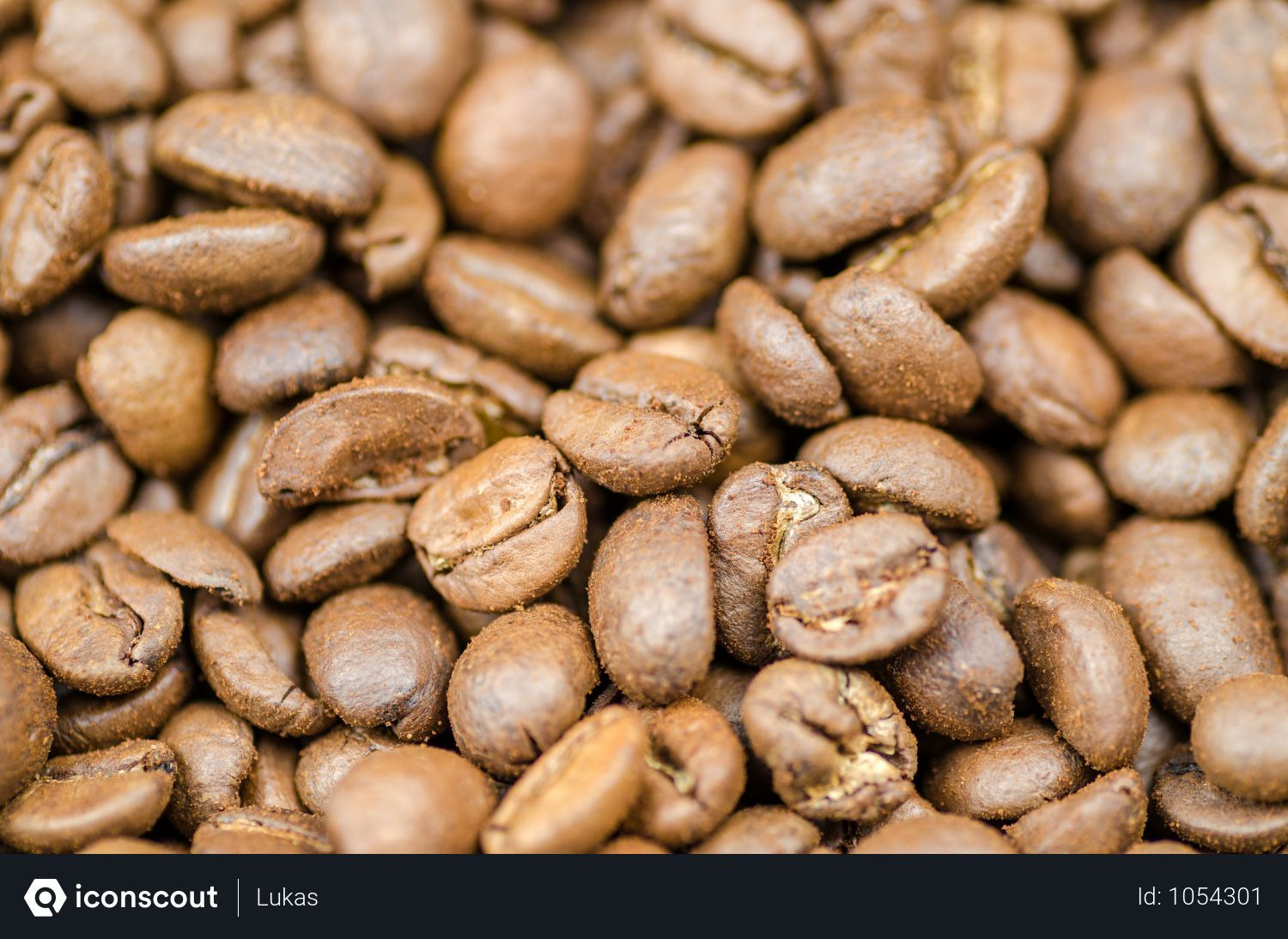 Free Coffee Beans Photo Download In Png Jpg Format Enjoy Coffee Free Coffee Coffee Around The World