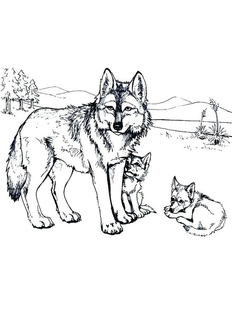 Wolves Coloring Page Pintable Coloring Ideas Animal Coloring Pages Puppy Coloring Pages Deer Coloring Pages