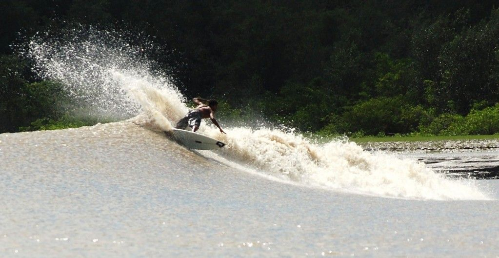 pororoca-amazon-river-surfing.  these waves only come up on some hundred river tidal zones during extreme tidal conditions.