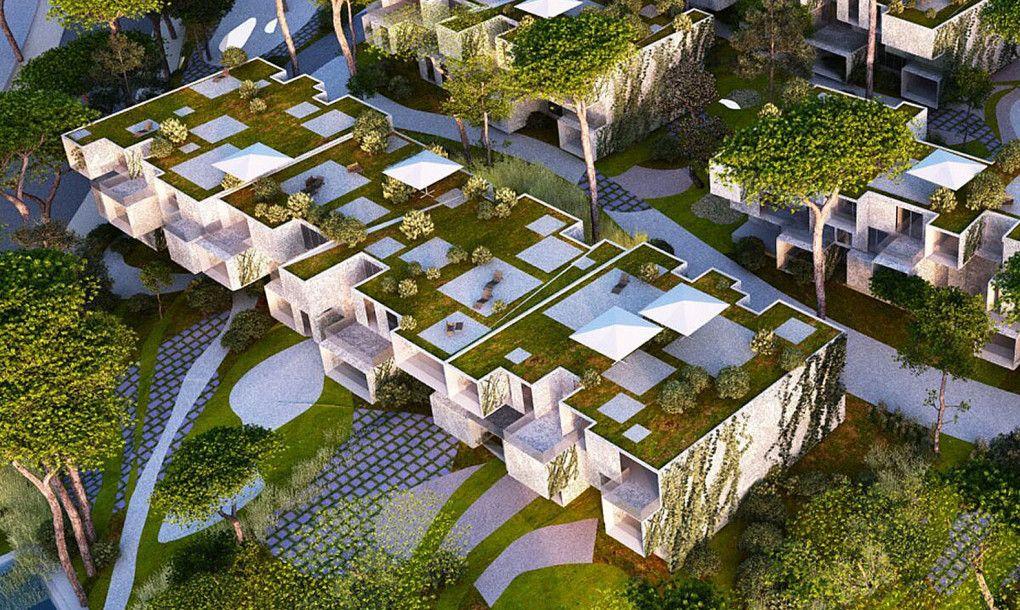 Malka Architecture Tangier Bay Housing Green Building Green Roof Green Architecture