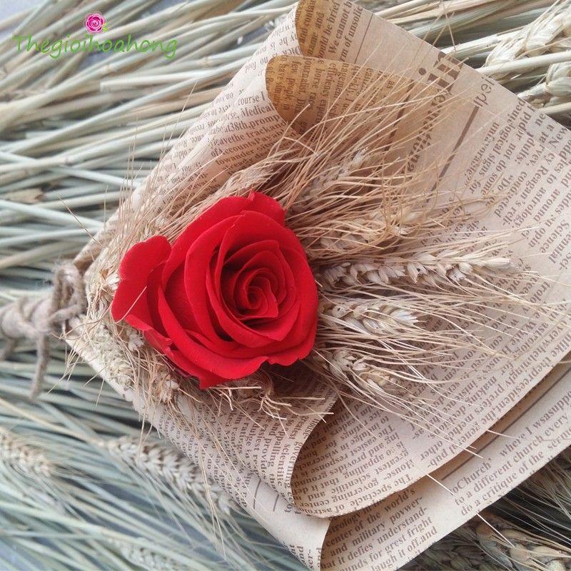 """""""Bó hoa hồng đỏ vĩnh cửu Mộc Mạc. Quà tặng ý nghĩa và độc ..."""