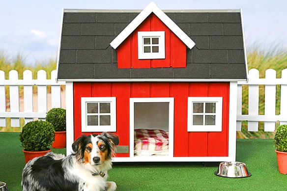 The World S 7 Most Expensive Dog Houses Shocking Cool Dog