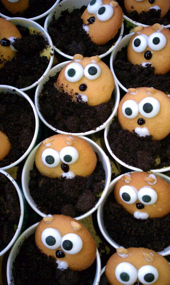 Groundhog's Day Treats :) put the little faces on a ...