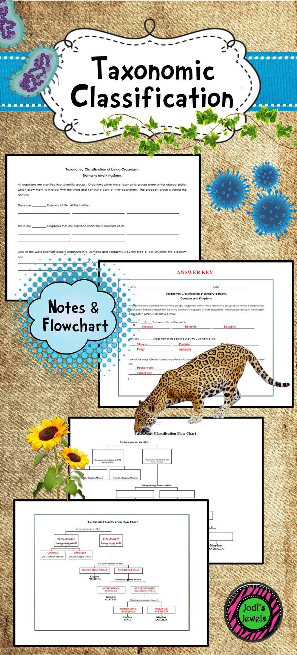 Taxonomic Classification Notes Chart Taxonomic Classification Worksheet Template Worksheets