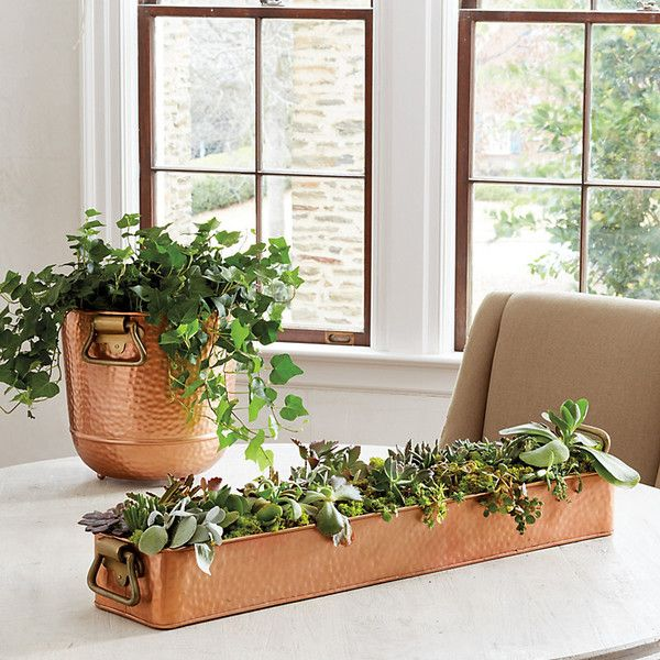 Ballard Designs Hammered Copper Planter Collection ($115) ❤ liked on Polyvore featuring home, home decor, copper home decor, succulent planters, succulent centerpieces, ballard designs and copper home accessories