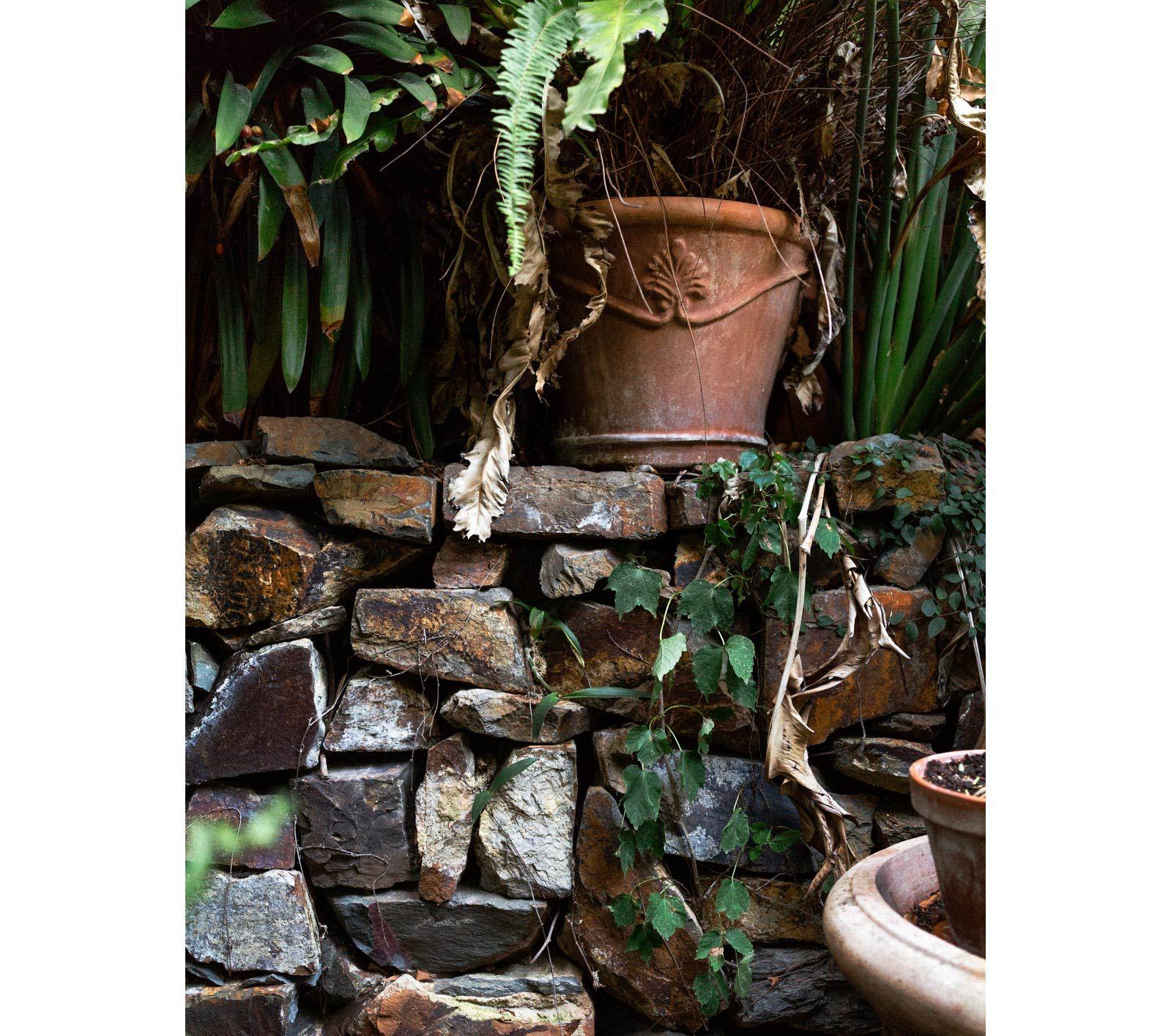 Urban Vegetable Gardening For Beginners: Bill Henson's Post-Industrial Walled Garden