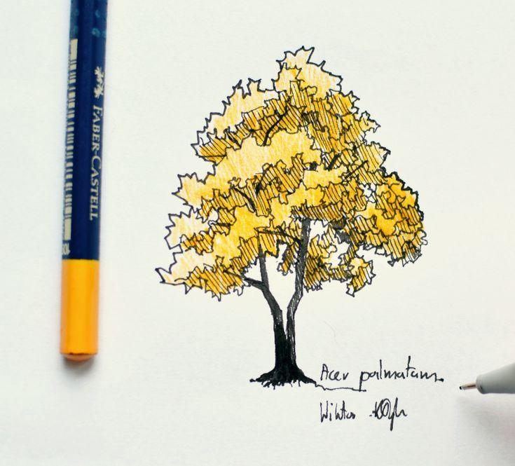Fast sketch by Wiktor Kłyk- garden and landscape designer. #landscapingdesign