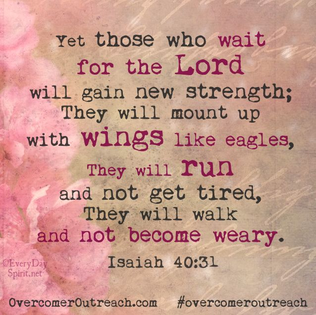 Isaiah 40:31...When we are waiting for God to move or speak in a certain situation.... it's so very encouraging to know that we can actually be gaining strength during that time if we rest in Him!! overcomeroutreach strength bibleverse