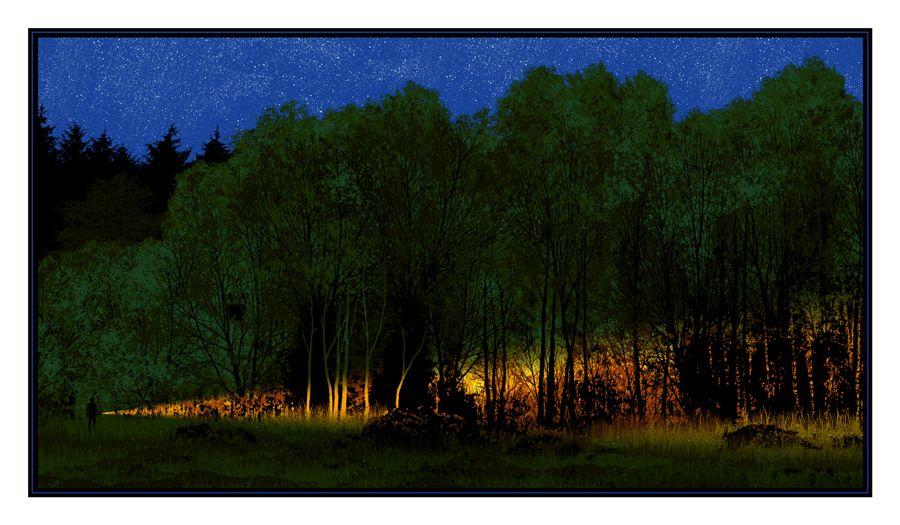 Dan McCarthy 'Breadcrumb Trail', 2011