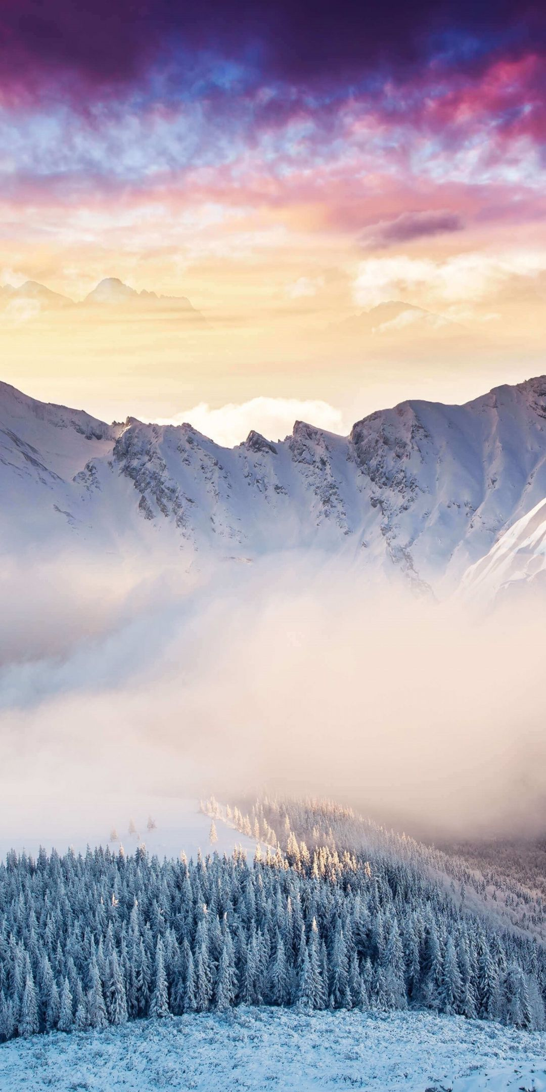 Landscape, mountains, winter, forest, clouds, 1080x2160