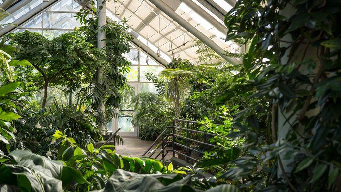 Brooklyn Botanic Garden #botanicgarden