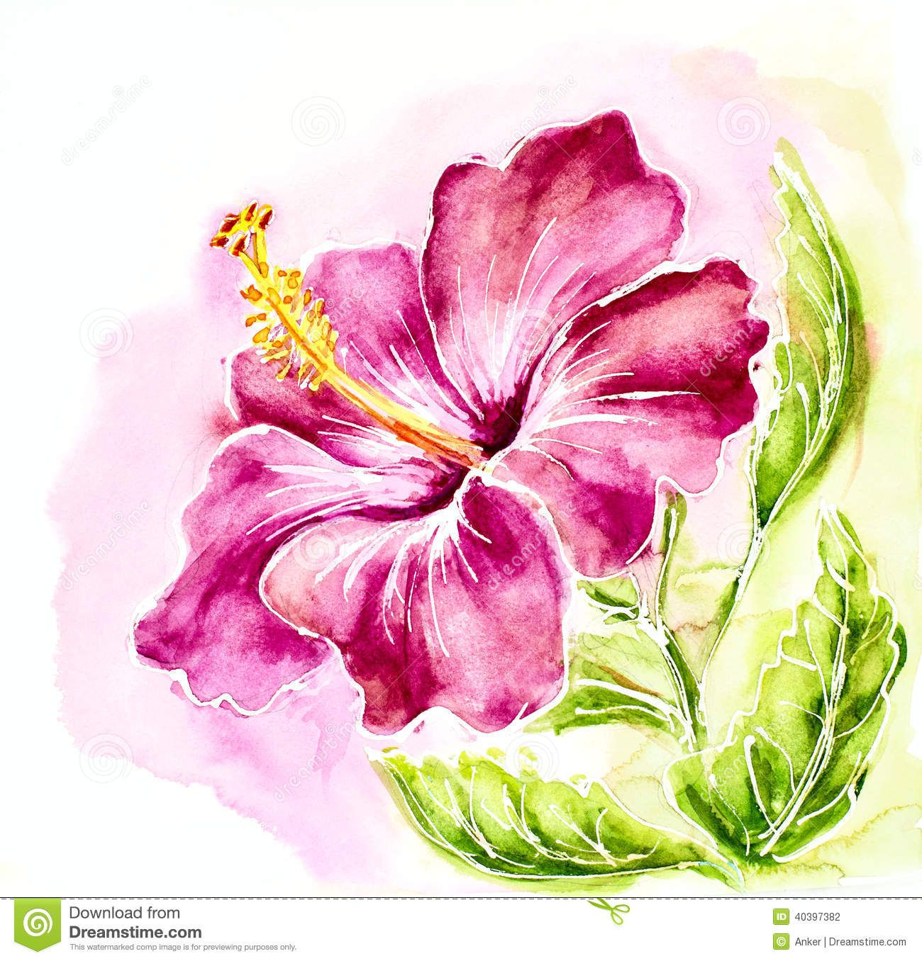 Hibiscus With Images Watercolor Paintings Watercolor Flowers