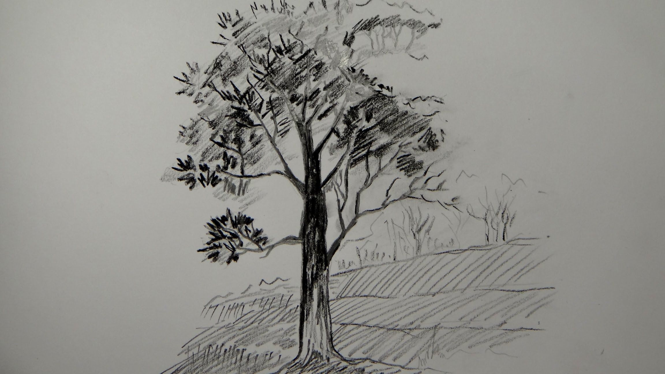 How to draw a tree using pencil (a simple tree) | Painting ... | 2304 x 1296 jpeg 309kB