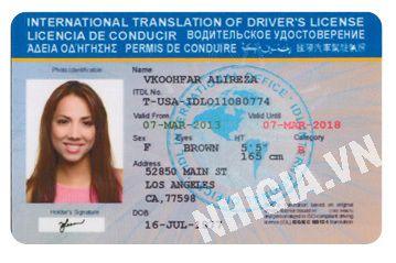 International Driver S License 19006654 0906836788