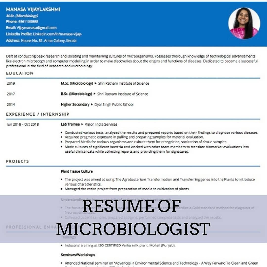 Sample Resume 016 Free online resume builder, Online