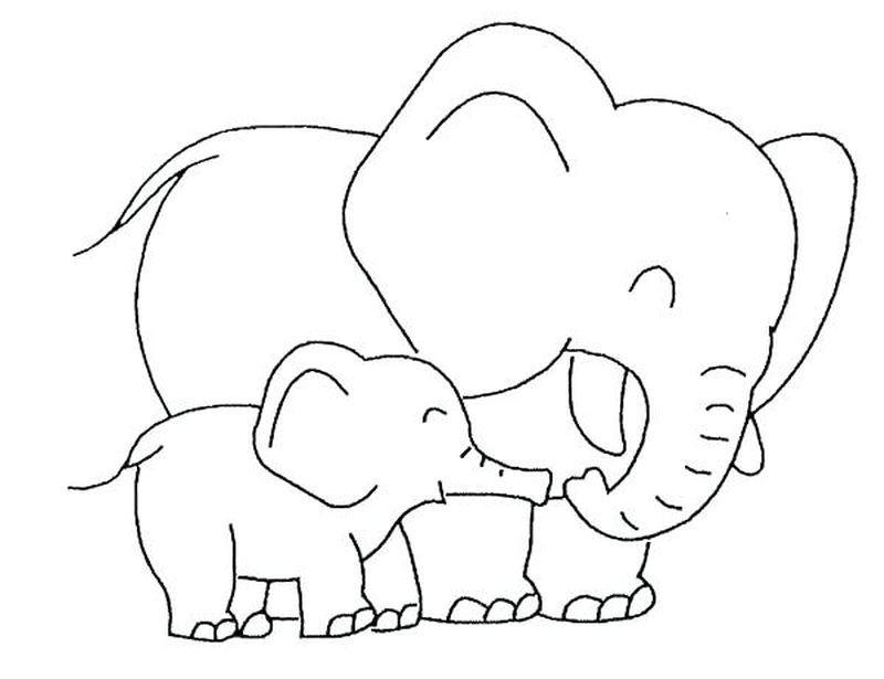 malvorlagen elefant video  tiffanylovesbooks