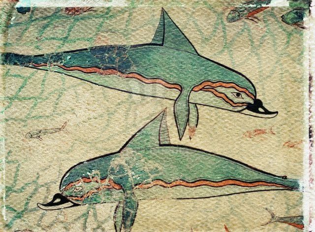 Detail of dolphins from dolphin fresco at queen 39 s megaron for Dolphin mural knossos