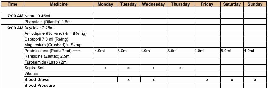 Weekly Medication Schedule Template Lovely 6 Medication Intake Schedule Templates Word Templates In 2020 Schedule Template Word Template Schedule Templates