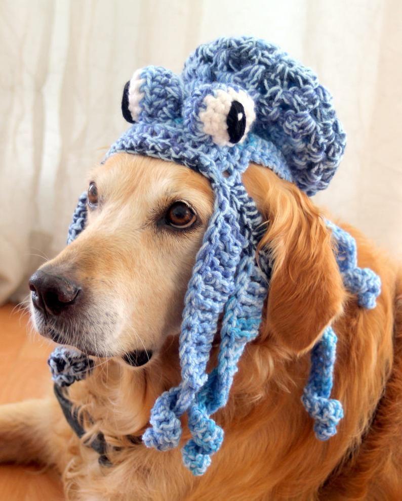 Octopus Hat For Dogs Kraken Dog Hat Octopus Dog Hat Funny