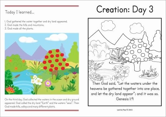 Sunday School Creation: Land and Plants | Sunday school ...