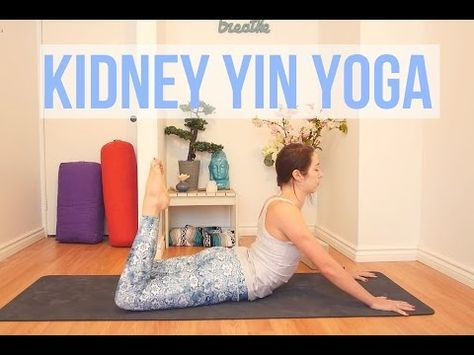 1 hour yin yoga  beginners full body yoga stretch  yin