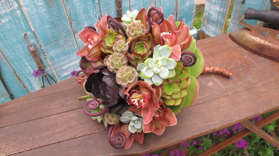 Dusty pink orchids, succulents, monkey tails, pods.
