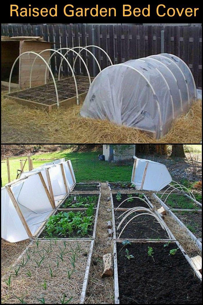 DIY Raised Garden Bed With Cover Camas de jardín, Lechos