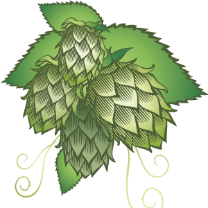 Hop heads! Let this be your essential guide towards hop additions and hop stages in homebrewing.