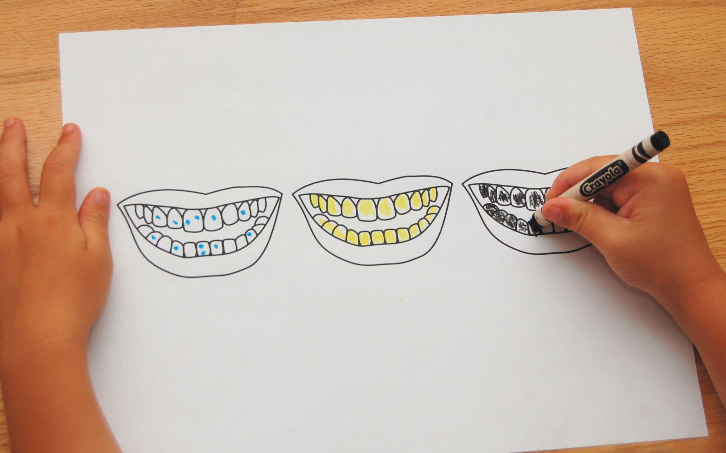 Dental Hygiene Lesson Brushing Teeth Activity My Body