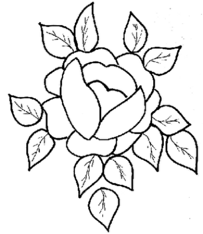 Beautiful Rose Coloring Pages | Coloring Pages Of Rose Flower | Coloring