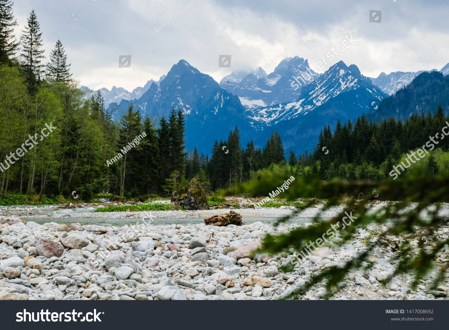 Mountain Landscape With River And Forest Outdoor Mountain View Tara Mountains At National Park Sponsore Mountain Landscape Anime Character Design Landscape