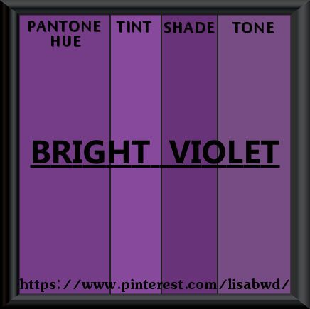 PANTONE SEASONAL COLOR SWATCH BRIGHT VIOLET