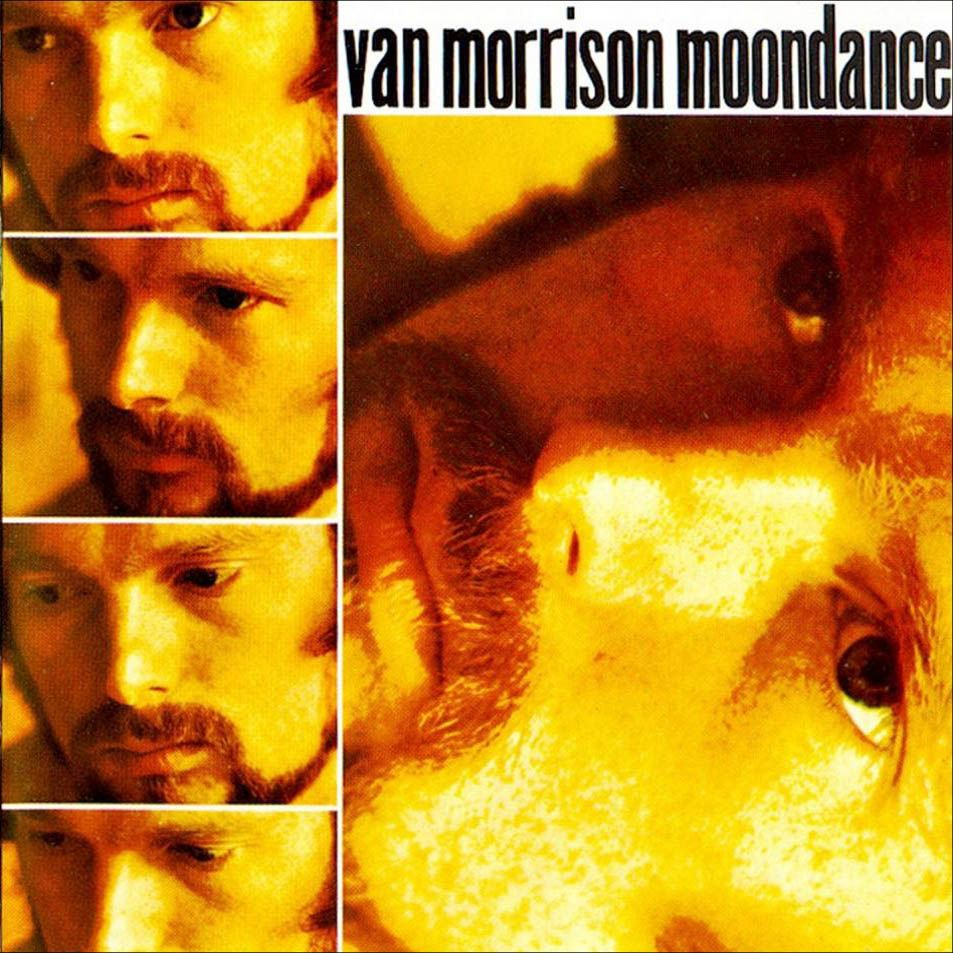 Moondance / Van Morrison