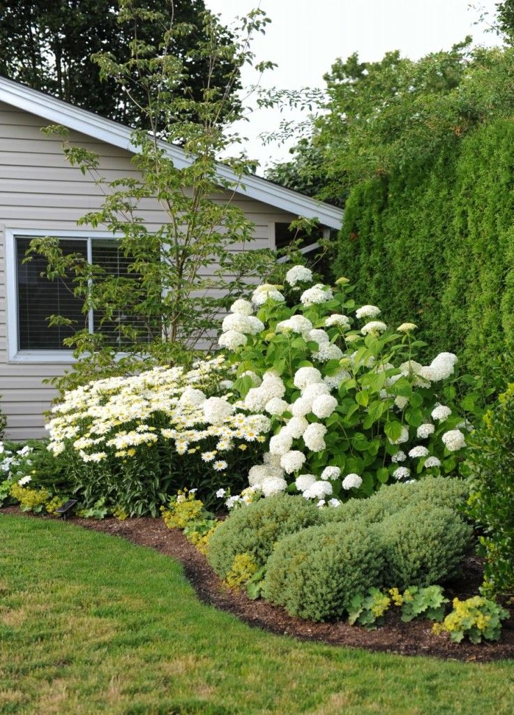 Maria Killam S White Garden Transformation Before After White Gardens Garden Planning Backyard Landscaping Designs
