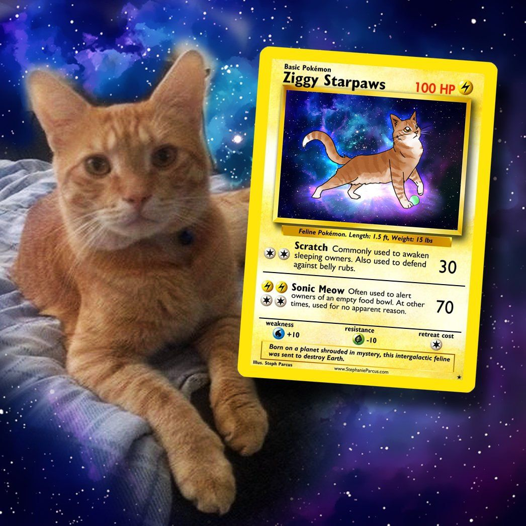 This Artist Will Draw Your Pet As A Fantastic Pokemon Card Pokemon Cards Pokemon Cat Cards