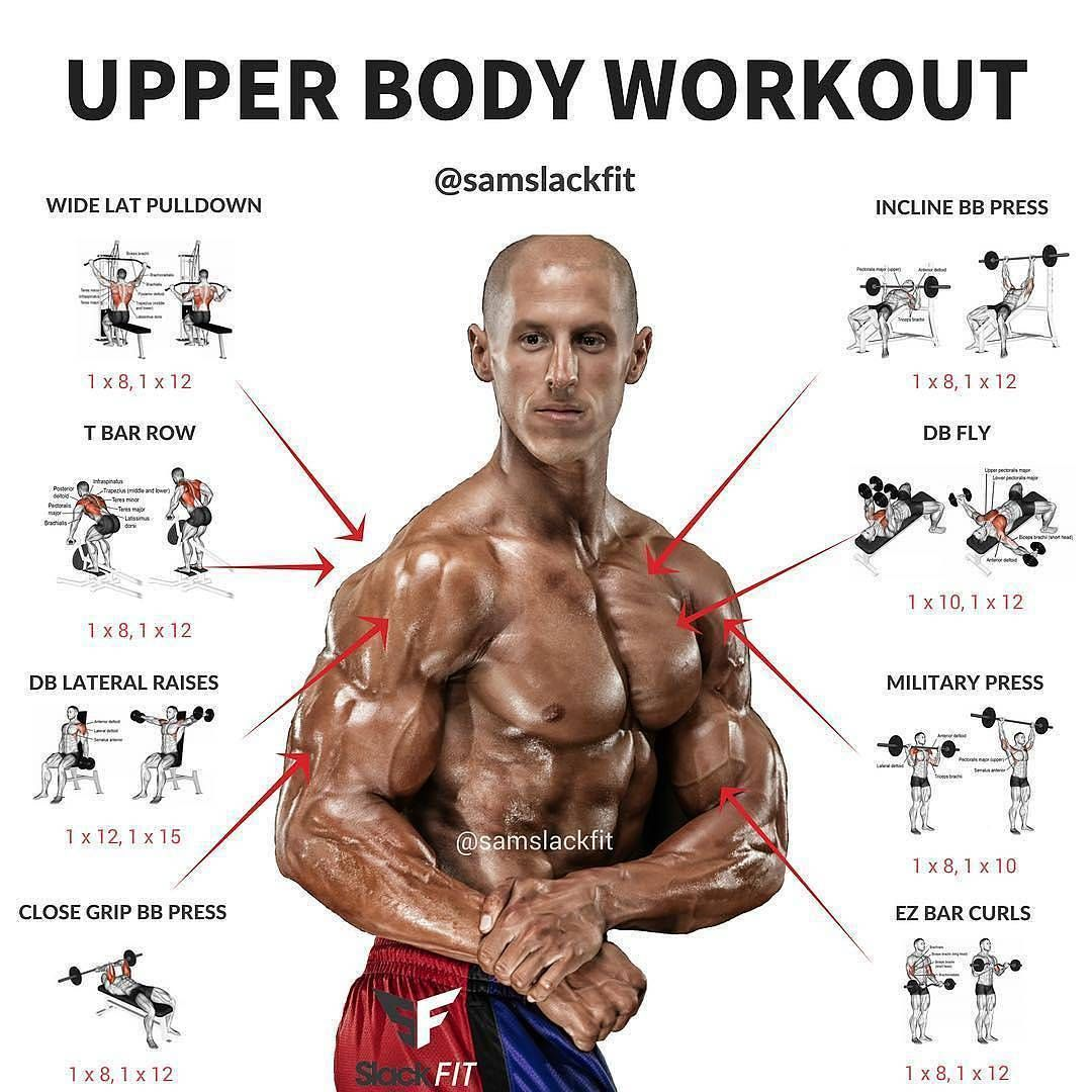 Upper Body Workout Sport And Exerciseweight Loss Exercise